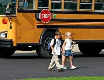 Thumb thumb school bus injury